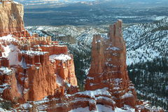 Inverno in canyon di Bryce Immagini Stock