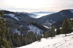 Inverno in Carpats orientale rumeno Fotografia Stock Libera da Diritti