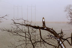 inverno, cena da neve, lago congelado, área cênico famosa Imagem de Stock Royalty Free