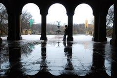Inverno a Central Park Fotografie Stock