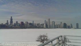 Inverno in Chicago Immagini Stock