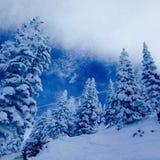 Inverno in Colorado fotografie stock libere da diritti