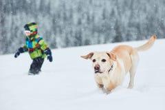 inverno com cão Imagem de Stock Royalty Free
