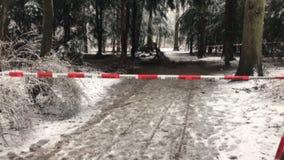 inverno com muita barricada do departamento do snowfallFire na frente de uma cena do crime na floresta vídeos de arquivo