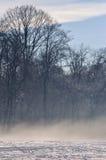 Inverno com névoa Imagens de Stock
