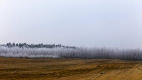 inverno congelado, paisagem rural gelado foto de stock