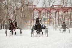Inverno Correre è una prova degli zamponi fotografia stock libera da diritti