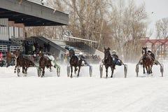 Inverno Correre è una prova degli zamponi fotografie stock