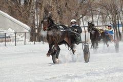 Inverno Correre è una prova degli zamponi fotografia stock