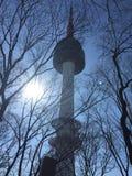 inverno da beleza da torre de N Seoul fresco Imagens de Stock