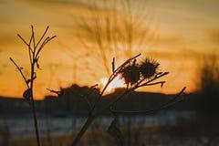 inverno da cidade do por do sol imagem de stock