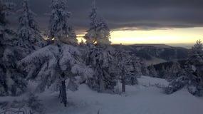 inverno da luz do sol da montanha Imagens de Stock