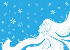 Inverno da mulher. Ilustração do vetor Fotos de Stock