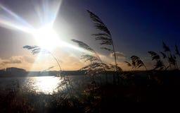 Inverno dal acqua il sole che appende in basso sul cielo Fotografia Stock