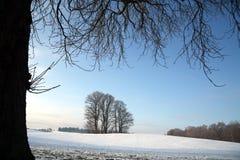 Inverno in Danimarca Fotografie Stock Libere da Diritti