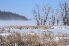 inverno das ilhas Imagem de Stock