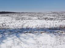 Inverno day2 Immagini Stock Libere da Diritti