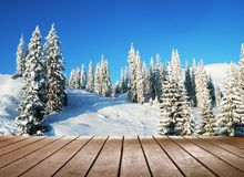 inverno de Amaizing Imagens de Stock Royalty Free