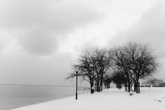 Inverno de Chicago Imagens de Stock