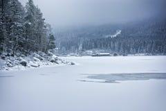 inverno de Eibsee Foto de Stock Royalty Free