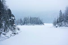 inverno de Eibsee Fotos de Stock Royalty Free