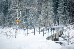 inverno de Eibsee Fotos de Stock