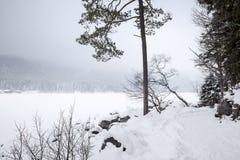 inverno de Eibsee Imagens de Stock Royalty Free