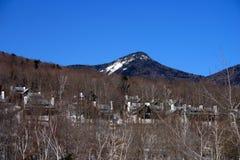 inverno de Nova Inglaterra Imagem de Stock Royalty Free