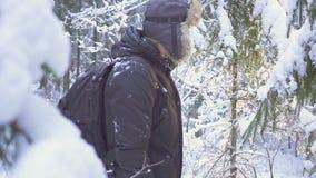 inverno de passeio Forest Traveler With Backpack da neve do homem Manhã ensolarada do inverno vídeos de arquivo