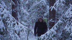 inverno de passeio Forest Traveler With Backpack da neve do homem olha a floresta da neve video estoque