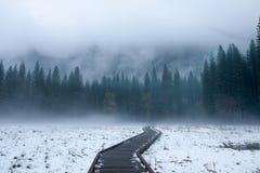 inverno de Yosemite Foto de Stock Royalty Free