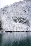 Inverno del lago Immagine Stock