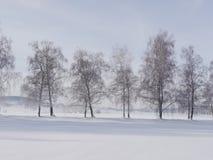 Inverno del paesaggio della neve Fotografia Stock Libera da Diritti