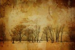 Inverno dell'annata Fotografie Stock Libere da Diritti