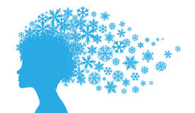 Inverno della signora Fotografia Stock