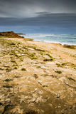 Inverno della tempesta della riva di mare della spiaggia dell'Australia della scogliera di Ningaloo immagine stock libera da diritti