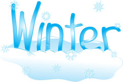 Inverno dello Snowy Fotografia Stock Libera da Diritti