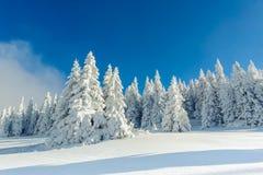 Inverno dello Snowy in montagne Fotografia Stock Libera da Diritti