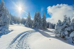 Inverno dello Snowy in montagne Immagine Stock Libera da Diritti