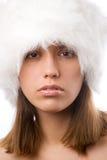 Inverno di bellezza immagine stock