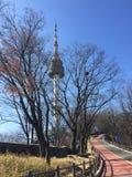 Inverno di bellezza della torre di N Seoul fresco Immagini Stock Libere da Diritti