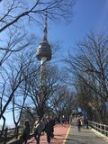 Inverno di bellezza della torre di N Seoul fresco Fotografia Stock Libera da Diritti