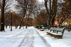 Inverno di Boston Immagine Stock