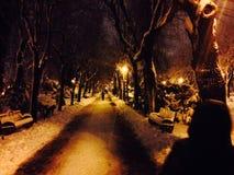 Inverno di Bucarest Fotografia Stock
