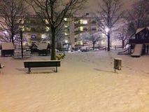 Inverno di Losanna Svizzera del parco della neve fotografia stock libera da diritti