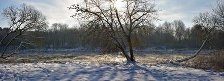 Inverno di lungofiume Fotografia Stock Libera da Diritti