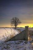 Inverno di Midwest fotografie stock