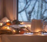 Inverno di natura morta Fotografie Stock Libere da Diritti