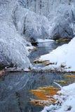 Inverno di Rock Creek Fotografie Stock Libere da Diritti