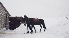 Inverno di Snowy, cavi disabili della puleggia tenditrice dell'uomo, tenenti con le redini un cavallo nero sul modo l'uomo ha una video d archivio